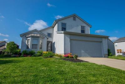 Hilliard Single Family Home For Sale: 5943 Stewart Hollow Drive
