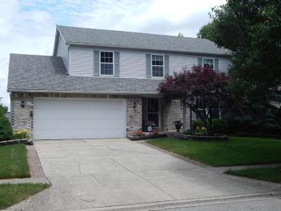 Hilliard Single Family Home For Sale: 4404 Knickel Drive