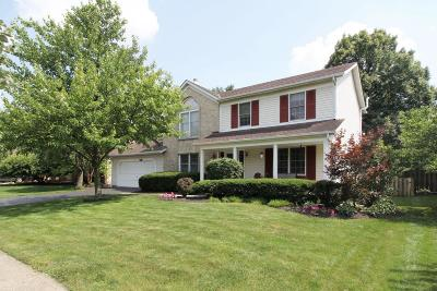 Columbus Single Family Home For Sale: 1975 Fraley Drive