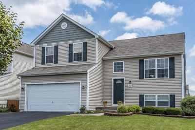 Blacklick Single Family Home For Sale: 802 Holly Farms Drive