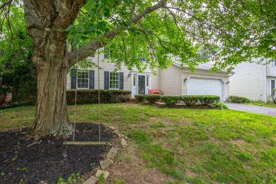 Columbus Single Family Home For Sale: 7618 Selwyn Court
