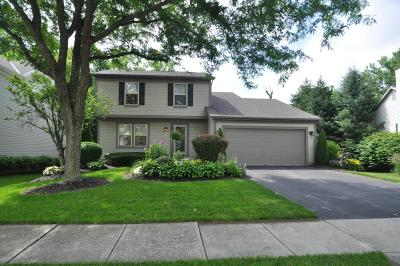 Columbus Single Family Home Contingent Finance And Inspect: 4417 Big Walnutview Drive