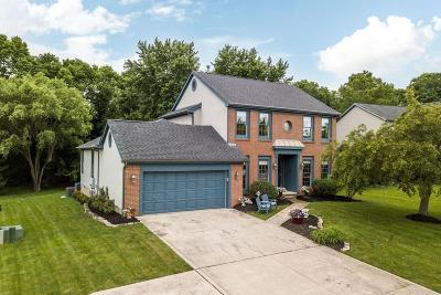 Gahanna Single Family Home For Sale: 619 Dark Star Avenue