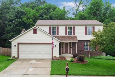 Columbus Single Family Home For Sale: 4306 Secludedwood Court