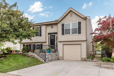Hilliard Single Family Home Contingent Finance And Inspect: 5248 Citrus Drive