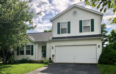 Delaware Single Family Home For Sale: 161 Blue Spruce Court