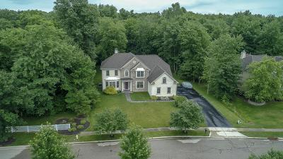 Blacklick Single Family Home For Sale: 2998 Creekwood Estates Drive
