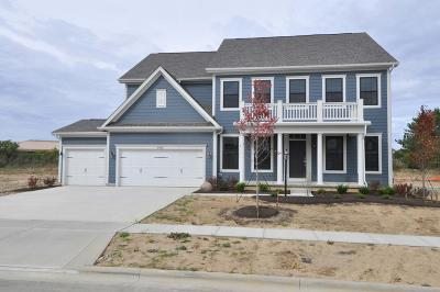 Dublin Single Family Home For Sale: 6448 Dicesare Loop #Lot 59