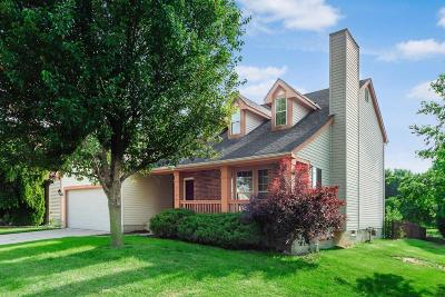 Hilliard Single Family Home For Sale: 3156 Inchview Drive