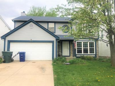 Galloway Single Family Home For Sale: 5894 Gazelle Drive