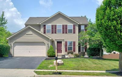 Grove City Single Family Home For Sale: 4903 Snowy Creek Drive