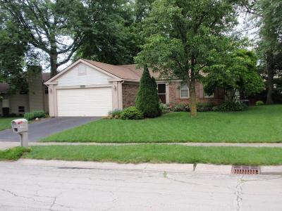 Columbus Single Family Home For Sale: 3635 Inverary Drive