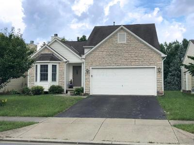 Lewis Center Single Family Home For Sale: 511 Cricket Run Road