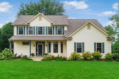 Westerville Single Family Home For Sale: 6962 Whitetail Lane