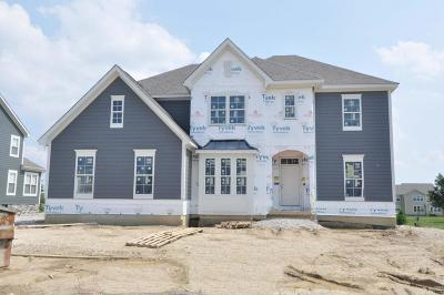 Dublin Single Family Home For Sale: 6479 Dicesare Loop #Lot 74
