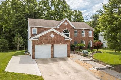 Lewis Center Single Family Home Contingent Finance And Inspect: 6427 Rivers Edge Drive
