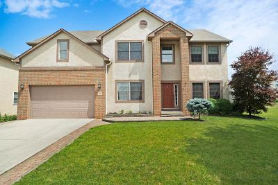 Westerville Single Family Home For Sale: 526 Bellfrey Court