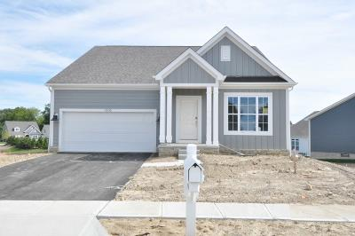 Westerville Single Family Home For Sale: 4508 McAlister Park Drive #Lot 8174