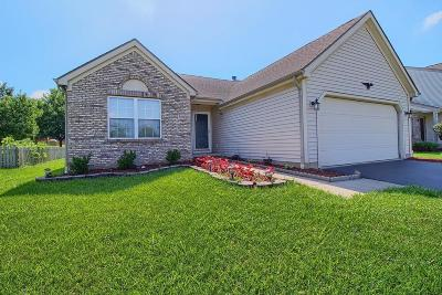 Blacklick Single Family Home Contingent Finance And Inspect: 308 Westerkirk Drive