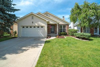 Westerville Single Family Home For Sale: 5642 Forest Grove Avenue