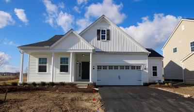 Plain City Single Family Home For Sale: 11881 Warbler Way