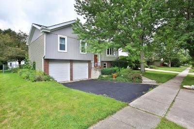 Hilliard Single Family Home Contingent Finance And Inspect: 4875 Leybourne Drive