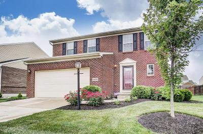 Dayton Single Family Home For Sale: 1689 S Branch Road