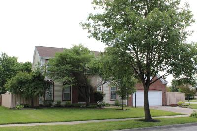 Grove City Single Family Home For Sale: 5650 Meadow Grove Drive