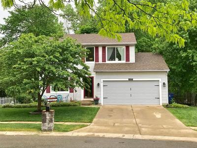 Pataskala Single Family Home For Sale: 465 Oak Meadow Drive