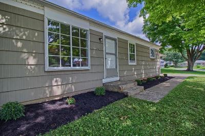 Westerville Single Family Home For Sale: 296 Mohawk Avenue