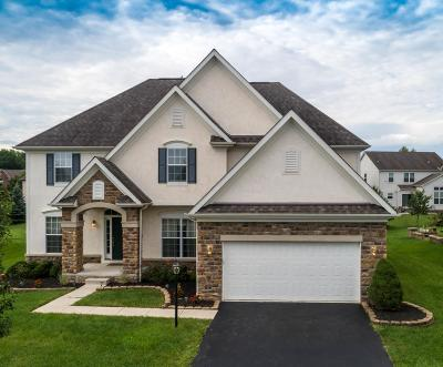 Dublin  Single Family Home For Sale: 7921 Tullymore Drive