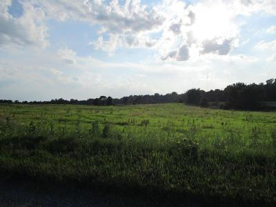 Cardington Residential Lots & Land Contingent Finance And Inspect: Township Road 20
