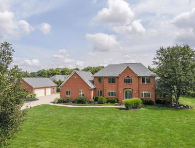 Canal Winchester Single Family Home For Sale: 6772 Ohio Canal Court