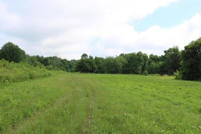 Centerburg Residential Lots & Land For Sale: 9520 Bennington Chapel Road