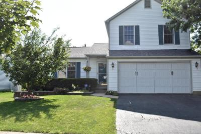 Blacklick Single Family Home Contingent Finance And Inspect: 1263 Harley Run Drive