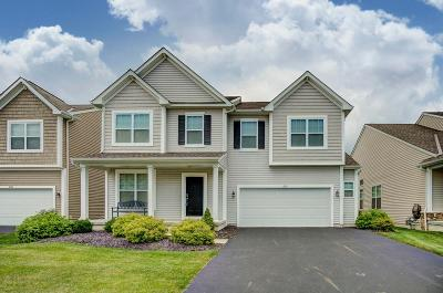Westerville Single Family Home For Sale: 6151 Dajana Drive
