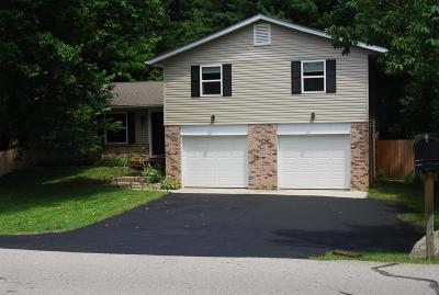 Pataskala Single Family Home For Sale: 183 Laurel Drive SW