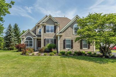 Lewis Center Single Family Home For Sale: 6421 Buckman Street