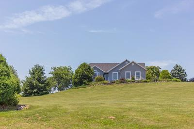 Fredericktown Single Family Home For Sale: 17037 Connector Road