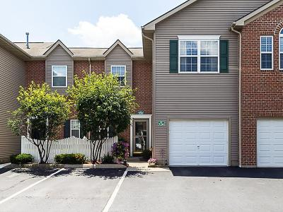 Lewis Center Condo Contingent Finance And Inspect: 724 Mystic Pointe Drive