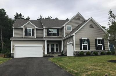 Westerville Single Family Home For Sale: 1237 Denmark Place