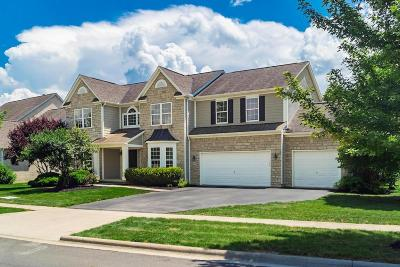 Powell Single Family Home For Sale: 3489 Windy Forest Lane