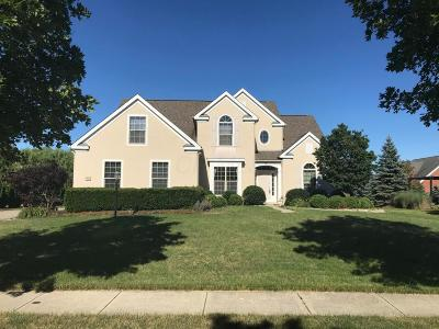 Dublin Single Family Home For Sale: 6842 McDougal Court