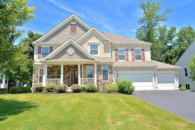 Lewis Center Single Family Home For Sale: 3231 Autumn Applause Drive