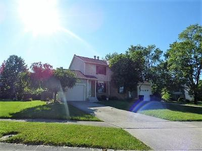 Powell Single Family Home For Sale: 8861 Worthingwoods Place