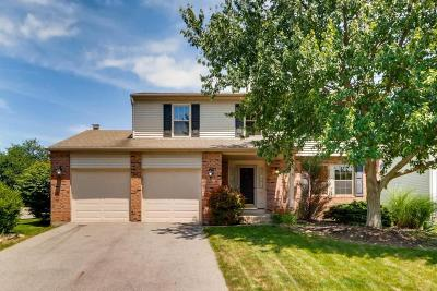 Dublin Single Family Home For Sale: 4056 Kilbannon Way