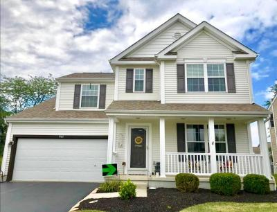 Delaware Single Family Home For Sale: 941 Sapphire Flame Drive