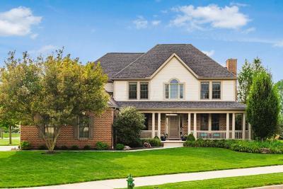 Dublin Single Family Home For Sale: 6877 Ballantrae Place