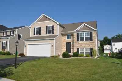 Etna Single Family Home Contingent Finance And Inspect: 116 Halcyon Drive
