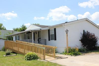 Delaware Single Family Home For Sale: 39 Birch Row Drive